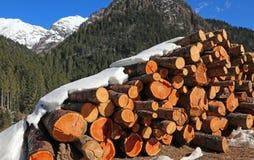 Woodpile von Klotz schnitt durch Blockwinden in den Bergen im Winter Lizenzfreies Stockbild