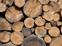 Woodpile of wooden logs. For firewoods royalty free stock photos