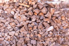 Woodpile. Firewood stacked in a  Birch wood at close range stock image