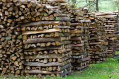 Woodpiles. Lots of fire wood piled up Royalty Free Stock Images