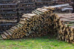 Woodpiles. Lots of fire wood piled up Stock Images