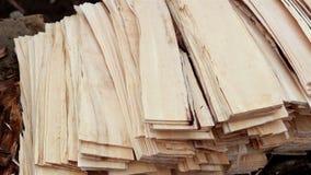 Woodplanks de madera de la sacudida de la tabla del cedro de la viruta almacen de metraje de vídeo