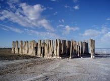 Woodpost permanece de la construcción con los cristales de la sal Imagen de archivo