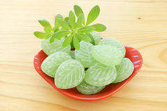 Woodruff and Candies in porcelain dish Stock Photography
