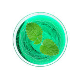 Woodruff punch with mint leaf Royalty Free Stock Photo