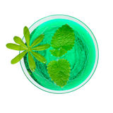 Woodruff punch with mint leaf Royalty Free Stock Photography