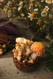 Magic fairytale party table decor, mushroom with confectionary in cup on wooden background, poison toxic food, halloween holiday. Woods, fairy tales & royalty free stock photo