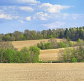 Woods and fields on a hills. Muraovo hills Moscow region, Russia Stock Images