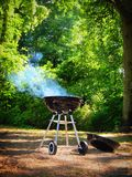Woods forest park trees and relaxing picnic, grilling, barbecue Royalty Free Stock Image
