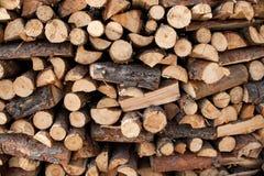 Woods II Stock Photography