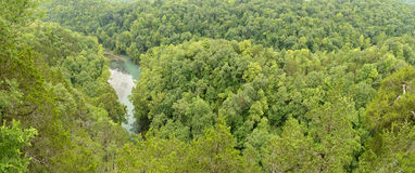 Woods at the Lake of the Ozarks Stock Image