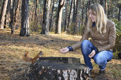 In the woods near the stump girl feeds a squirrel with nuts. Stock Photo