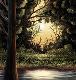 Woods Painting. A warm nature scene of a lake in the woods Stock Image