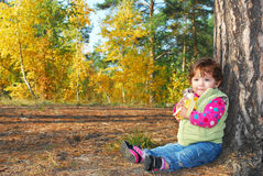 In the woods under a pine tree sits a beautiful little curly gi Stock Photography