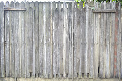 Woods wall. The wood wall - The tree wall -  triangle on top Royalty Free Stock Image