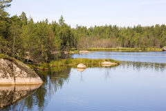 Woods and Water. Countryside lake in a pine forest in summer, Russia Stock Photo