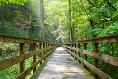 Into The Woods. A wooden pathway leading through the woods to Hayden Falls in Columbus, Ohio royalty free stock photography