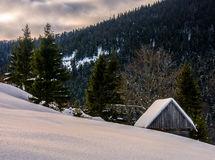 Woodshed on the hillside in winter mountains. Woodshed behind the snowy hill near spruce forest in winter mountains early in the morning Royalty Free Stock Photo
