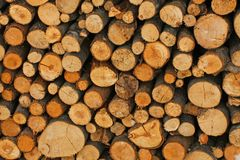 Woodshed with logs cut and perfectly aligned for heating during Stock Image