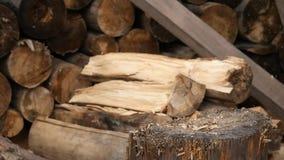 Woodsheds и швырок прерывать, древесина lumberjack разделяя с старой осью движение медленное сток-видео