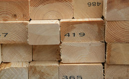 Woodstack. Sliced up timber piled up Royalty Free Stock Photos