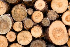 Woodstack background Royalty Free Stock Photography