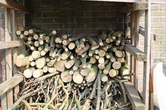 Woodstack. A woodstack in my garden Stock Photos