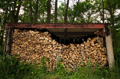 Woodstack. An old shed filled with firewood in a forest Stock Photos