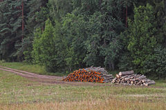 Woodstacks Stock Image