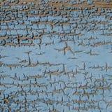 WoodTextured-Hintergrund - alte blaue gebrochene und Schalen-Farbe Lizenzfreies Stockbild
