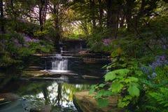 Woodwick ogródy obraz royalty free