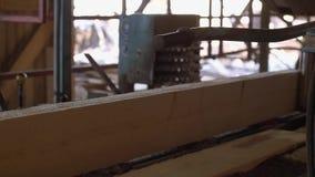 Woodworker управляет промышленной машиной пилы с деревянным журналом акции видеоматериалы