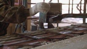 Woodworker управляет промышленным верстаком пилы с журналом пиломатериала сток-видео