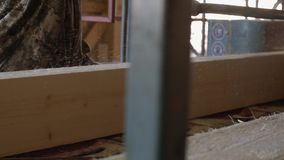 Woodworker управляет промышленным стендом пилы с журналом пиломатериала видеоматериал