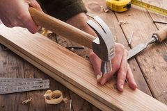 Woodworker hammer a nail Royalty Free Stock Image