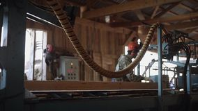 Woodworker in hard hat cutting lumber log on industrial saw machine stock video footage