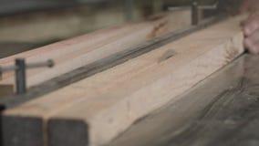 Woodworking fabryka, tartak zbiory