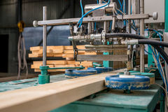 Woodworking. Image of apply the adhesive on timber Royalty Free Stock Image