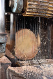 Woodworking. Machine saws a tree trunk on board Royalty Free Stock Photography