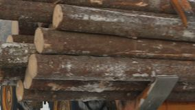 Woodworking plant.Forest industry. Woodworking plant.Forest logs, unload the tractor, transporting the logs in a forest. Forest industry.The logs are prepared stock video