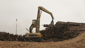 Woodworking plant. Loading logs stock video
