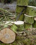 Woodworking scenery Stock Photos