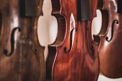 Woodworking sztuka, muzykalni intruments i skrzypce robić dębowy drewno, fotografia royalty free