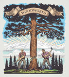 Woodworks. Two of the lumberjack chopped the tree with axes. Illustration made in graphic style and painted in color Royalty Free Stock Image