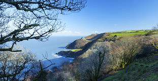 Woody Bay Vista Royalty Free Stock Photos