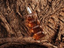 Woody fragrance. Perfume spray bottle on wooden tree bark as background. Transparent glass cologne aroma template. Woody