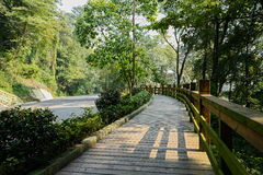 Woody planked footpath with balustrade along road on sunny day Royalty Free Stock Photography