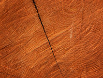 Woody texture of saw cut with crack Stock Photos
