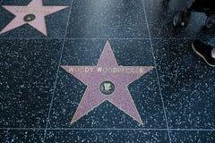 Woody Woodpecker Hollywood Star stockfotografie