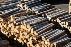 woodyard Fotografía de archivo libre de regalías